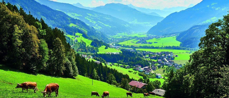 Zillertal iStock1135128573